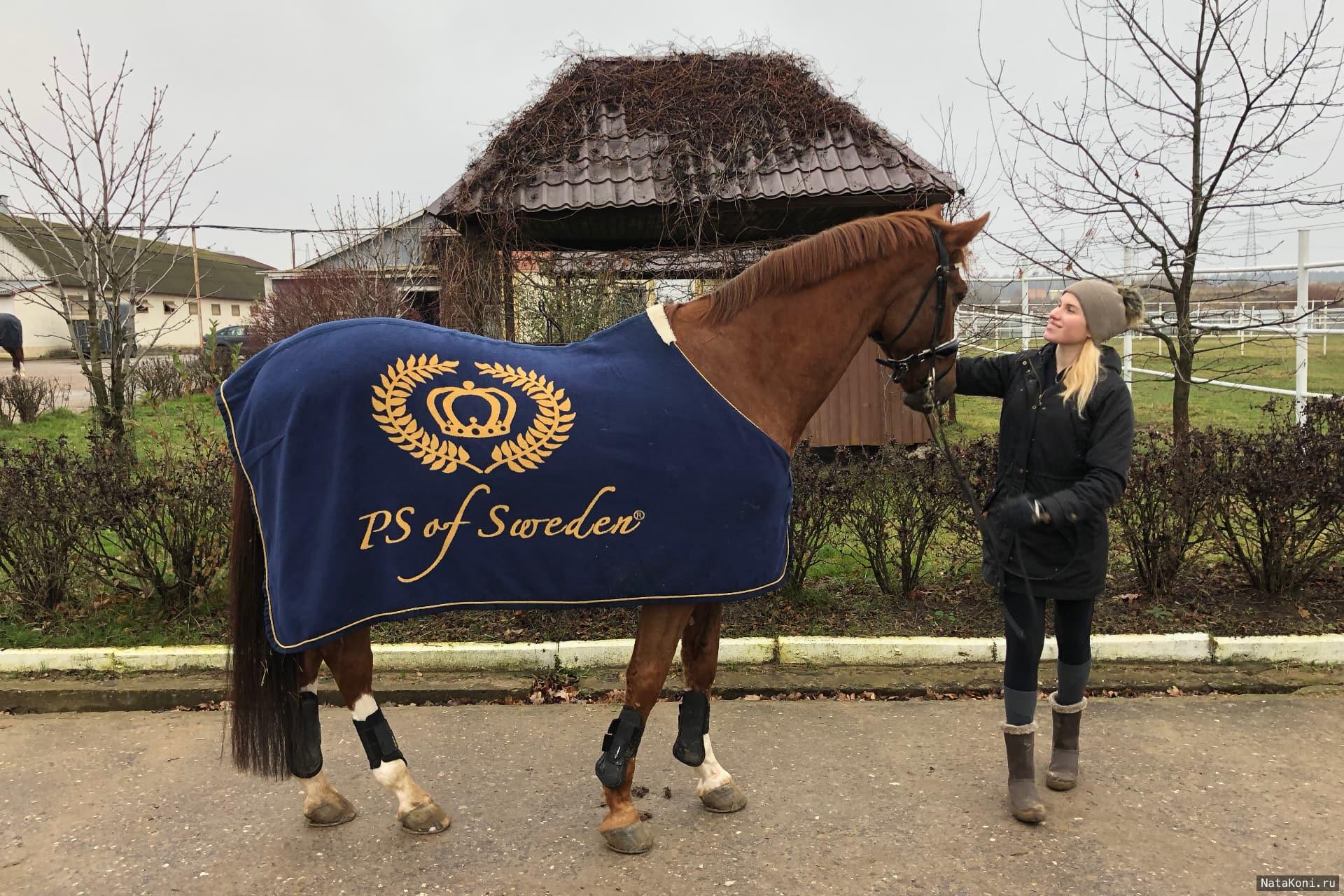 Ната со своим конём Браво в КСК Ромашково